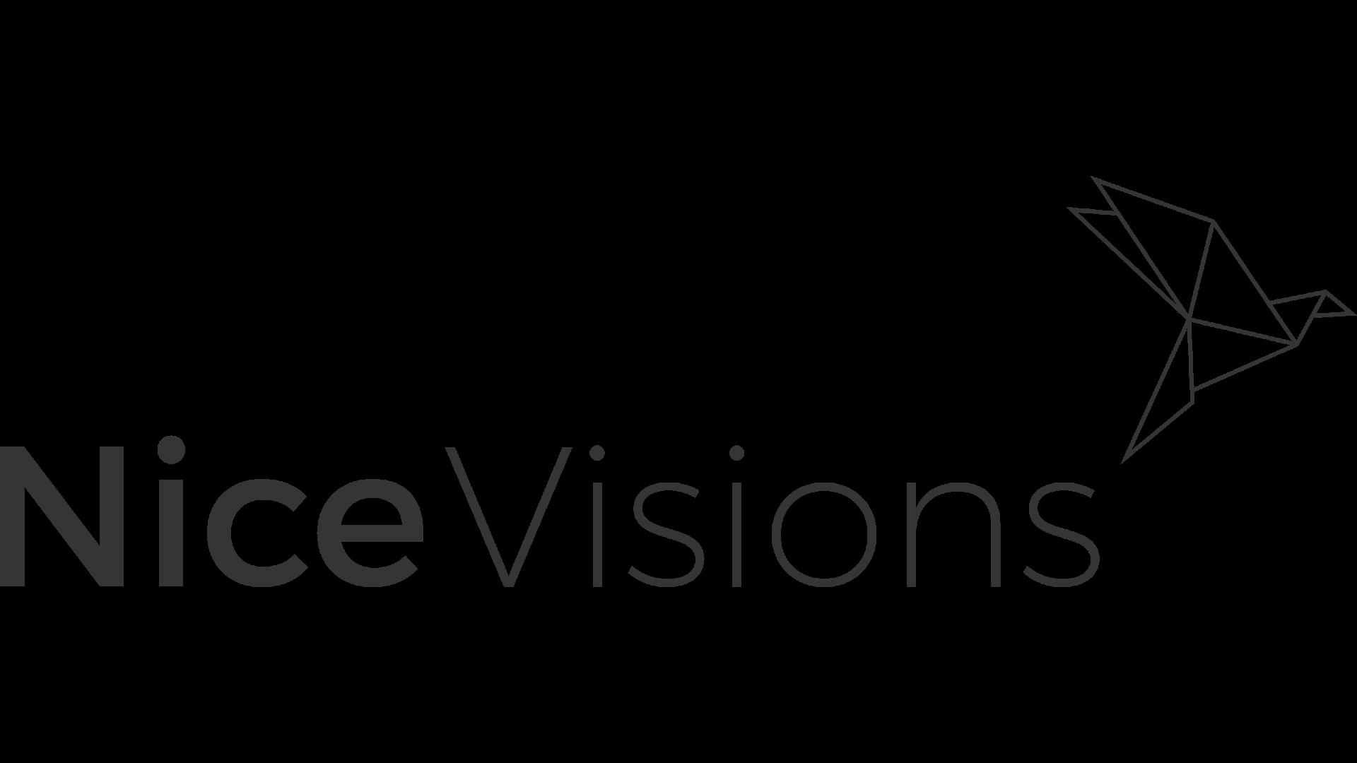 Nice Vision logo